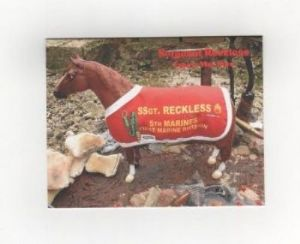 Browse Sergeant Reckless Notecards